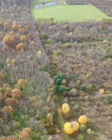 hunting land for sale SW MI