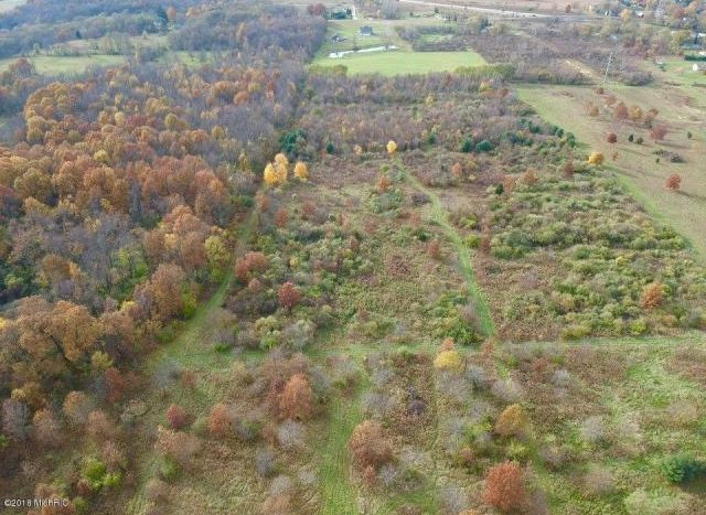 over 40 acres Coloma MI