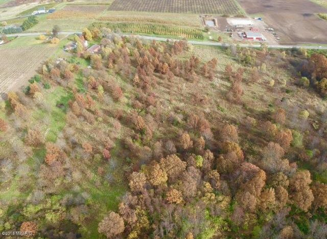 40 acres of farmland for sale Southwest MI